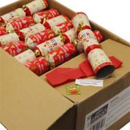 Childrens Christmas Cracker
